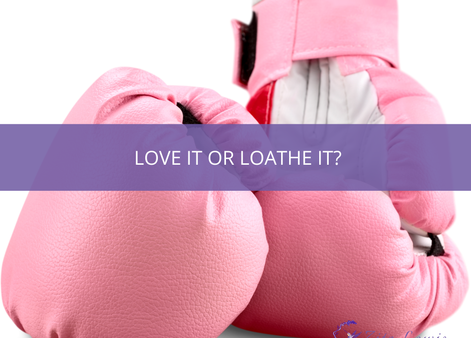 Photograph of a pair of pink boxing gloves and text overlay that reads Love it or Loathe it?